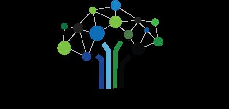 Dental Success Network logo